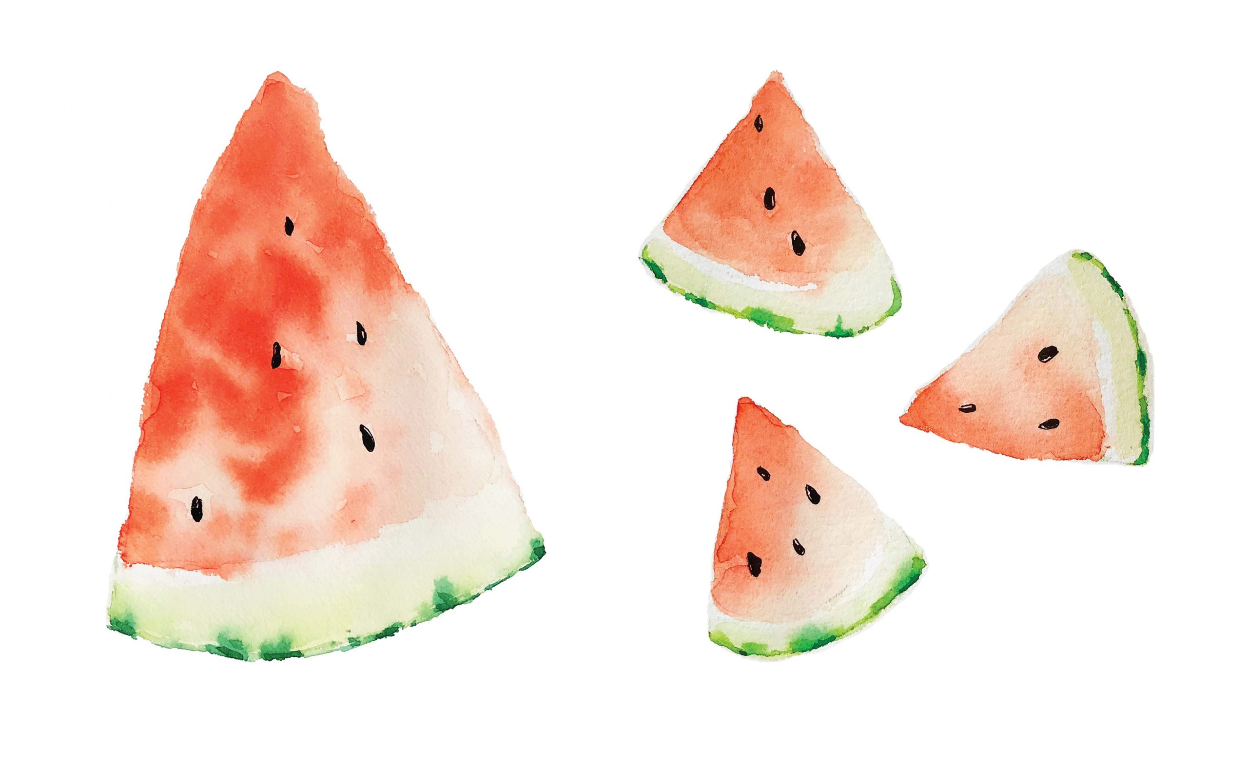 Painting Watermelon with Watercolor in easy and cool steps